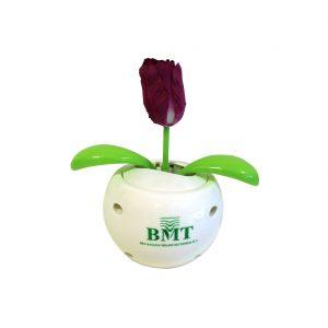 Solar tulpen met logo