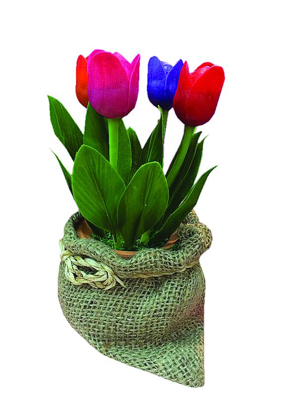 Tulpen in jute zakje