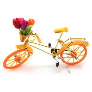 fiets-met-tulpen-oranje-fiets001.jpg