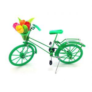 fiets-met-tulpen-groen-fiets003.jpg