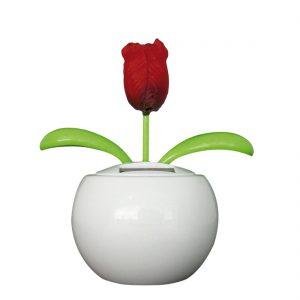 solar-flip-flap-flower-tulp-rood-10211.jpg