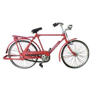 rode-fiets-fiets004.jpg