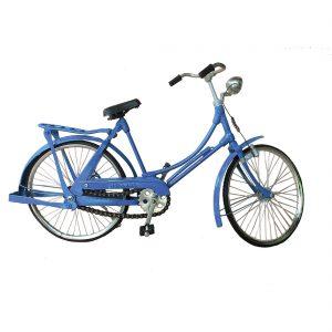 blauwe-fiets-fiets004.jpg