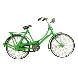 groene-fiets-fiets004.jpg