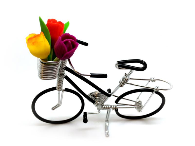 IJzerdraad fiets zwart
