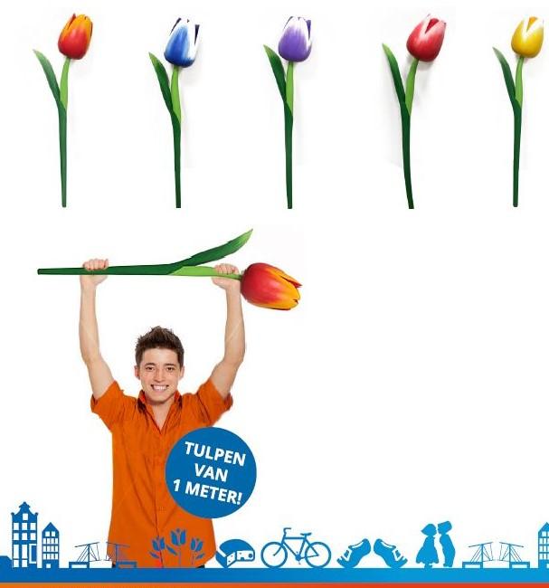 https://www.klompjes.com/wp-content/uploads/2017/12/afbeelding-1-meter-tulpen.jpg