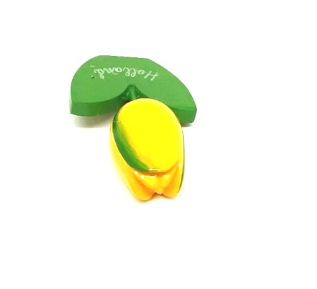 Houten tulp magneet geel groen